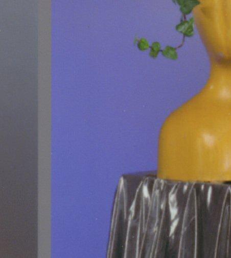 Drucktest photo950 Vase
