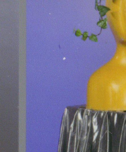 Drucktest picturemate Vase