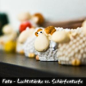 Podcast Foto Lichtstark Schärfentiefe