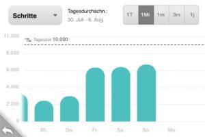 fitbit-app-aktivitäten-details