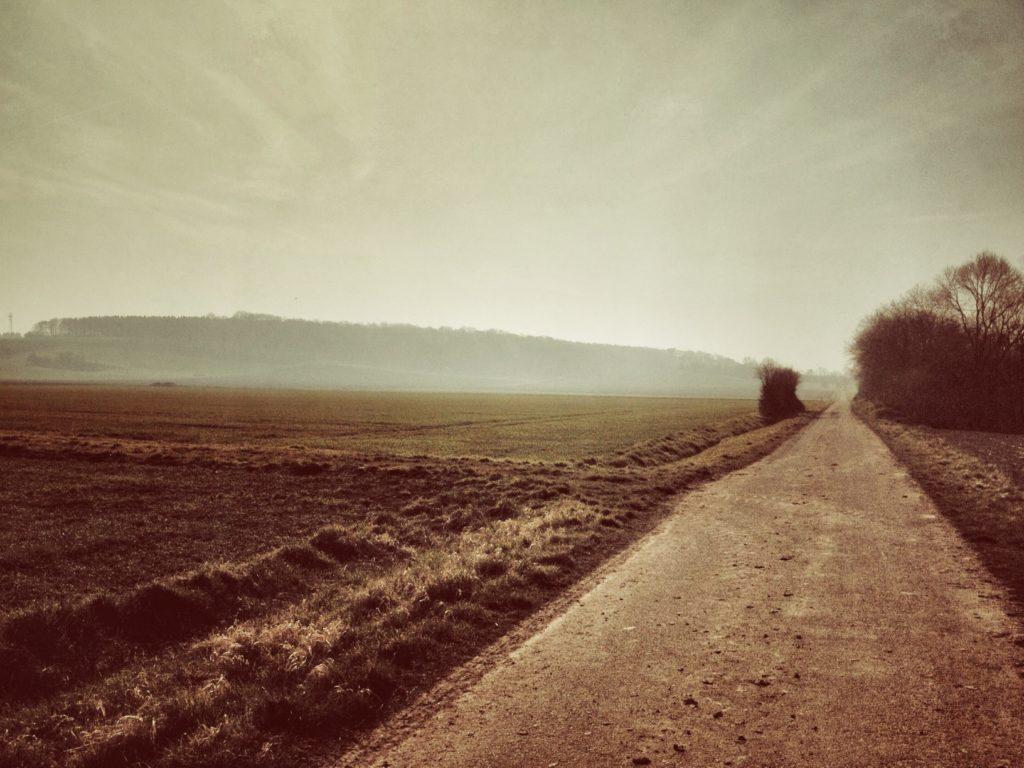 Auf dem Weg zurück an Feldern vorbei bei tollem Wetter.